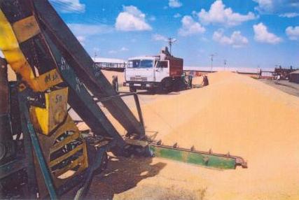 Центральный ток в период уборки урожая